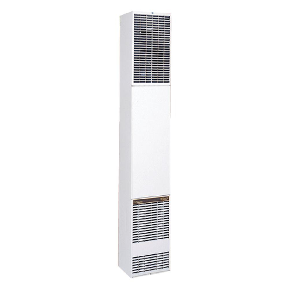 Williams 40,000 BTU/hr Counterflow Direct-Vent Wall Furna...
