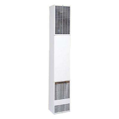 40,000 BTU/hr Counterflow Direct-Vent Wall Furnace Natural Gas Heater
