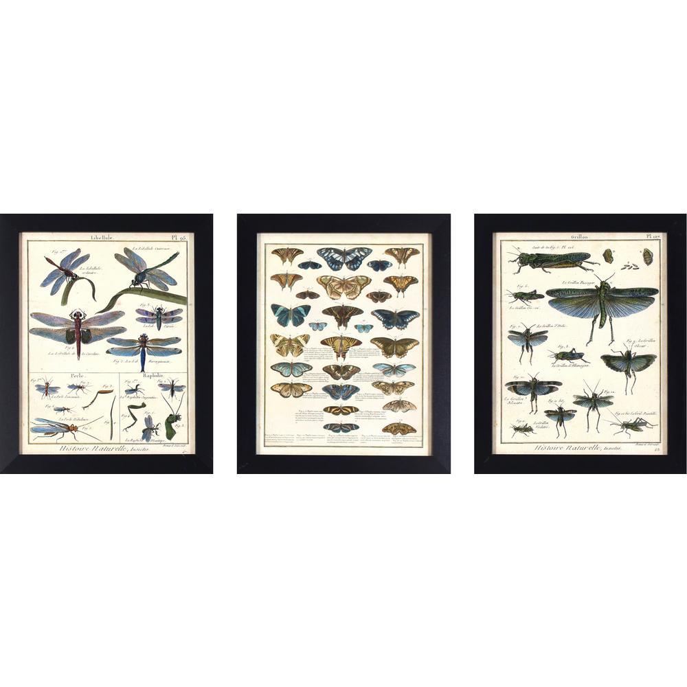 3 special values black art prints wall art the home depot
