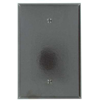 1-Gang No Device Blank Wallplate, Oversized, Thermoset, Box Mount, Brown