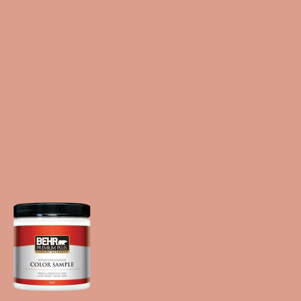 BEHR Premium Plus 8 oz. #210D-4 Medium Terra Cotta Interior/Exterior Paint Sample