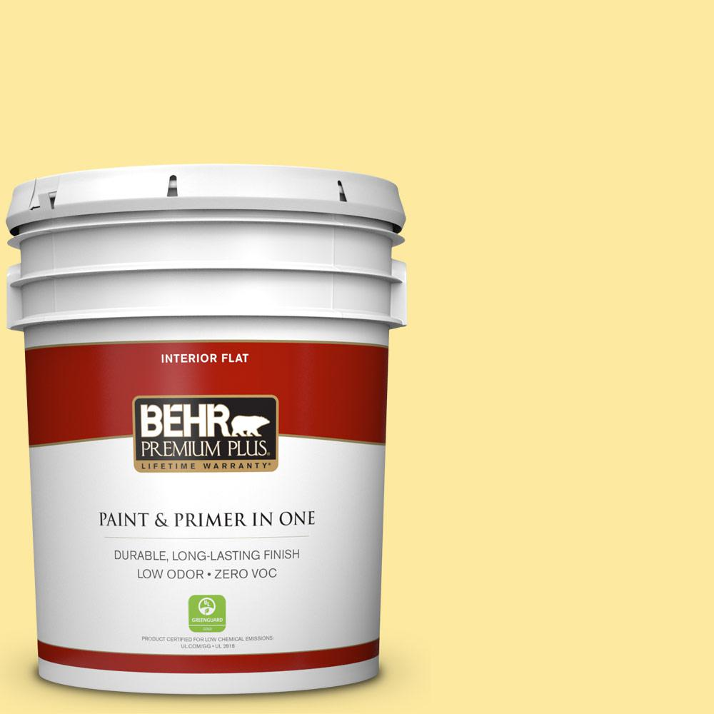 5-gal. #P300-4 Rise and Shine Flat Interior Paint