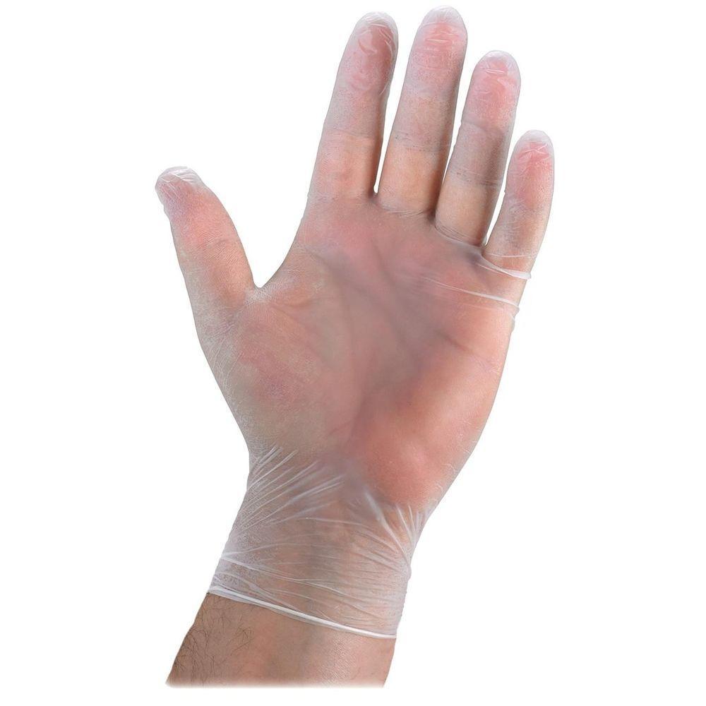 Powdered Vinyl General Purpose Gloves (100 per Box)