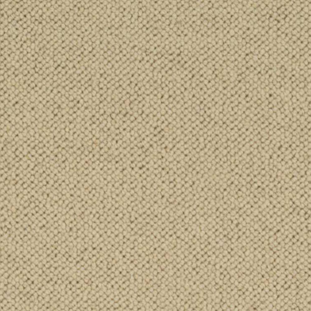 Carpet Sample - Hampton - Color Manila Loop 8 in. x 8 in.