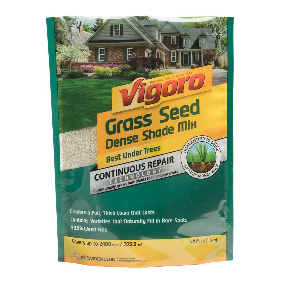3 lb. Dense Shade Grass Seed Mix