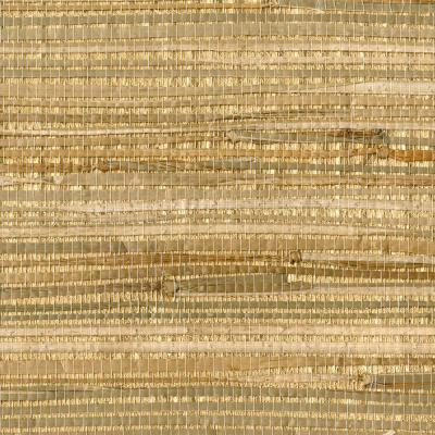Zoho Neutral Foil Grass Grass Cloth Peelable Wallpaper (Covers 72 sq. ft.)