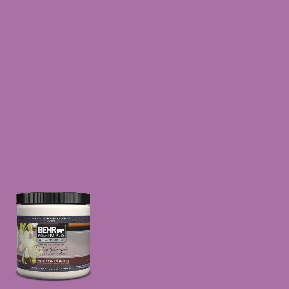 Behr Premium Plus Ultra 8 Oz 670b 6 Orchid Kiss Matte Interior