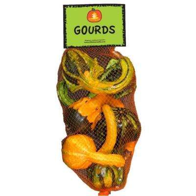 Mixed Bag Harvest Gourds