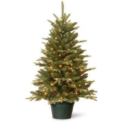 36 in. Everyday Collection Evergreen Tree with Clear Lights