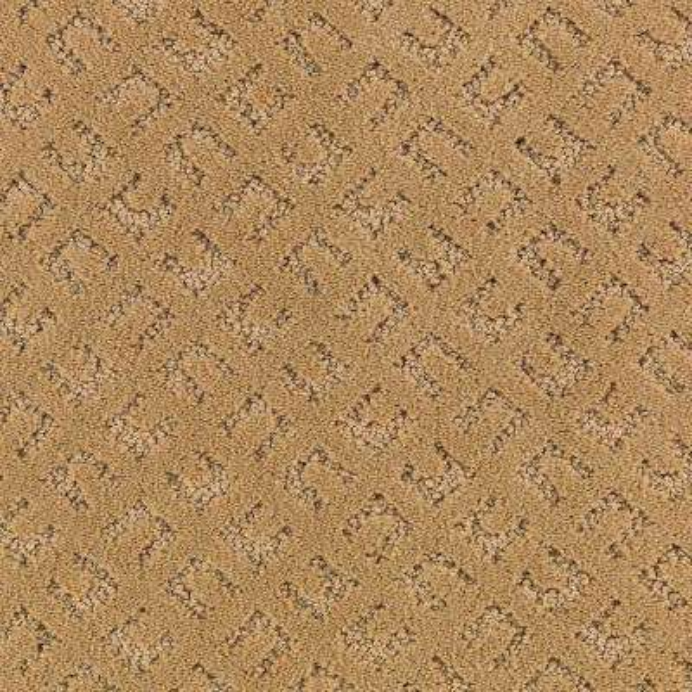 Carpet Sample - Exquisite - Color Midas Pattern 8 in. x 8 in.