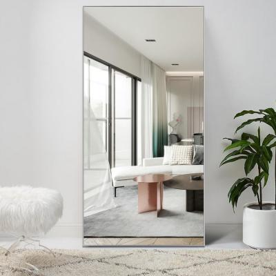 Large Rectangle Silver Hooks Modern Mirror (51 in. H x 31 in. W)