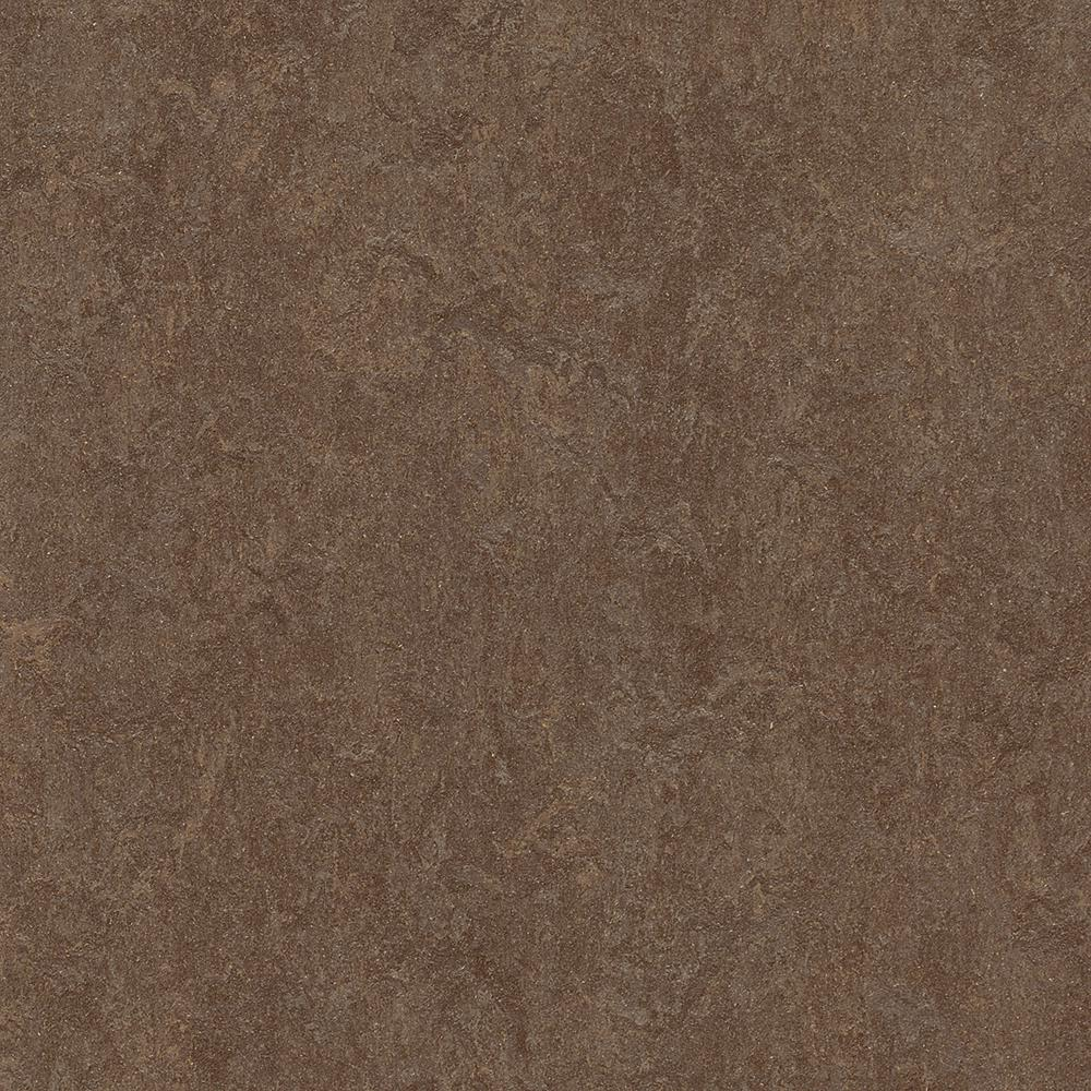Marmoleum Click Cinch Loc Walnut 9.8 mm Thick x 11.81 in. Wide x 11.81 in. Length Laminate Flooring (6.78 sq. ft. / case)