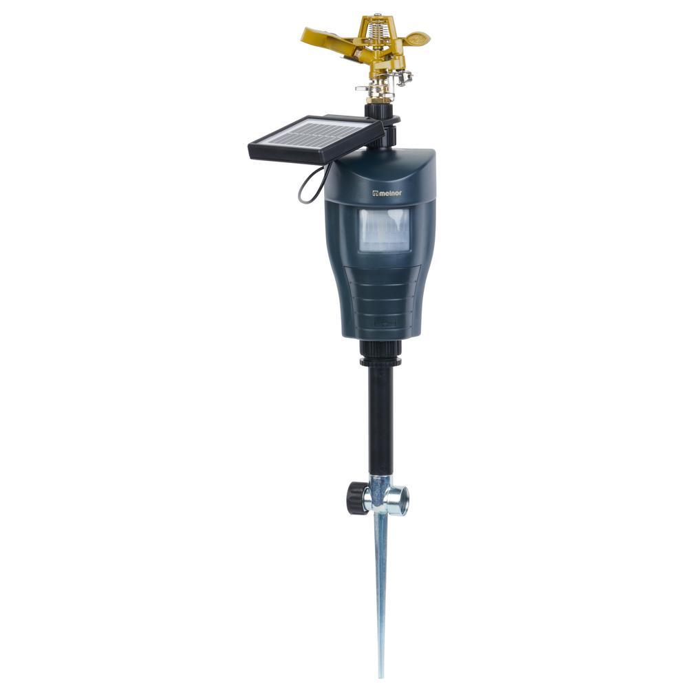 Sprinkler with Motion Sensor