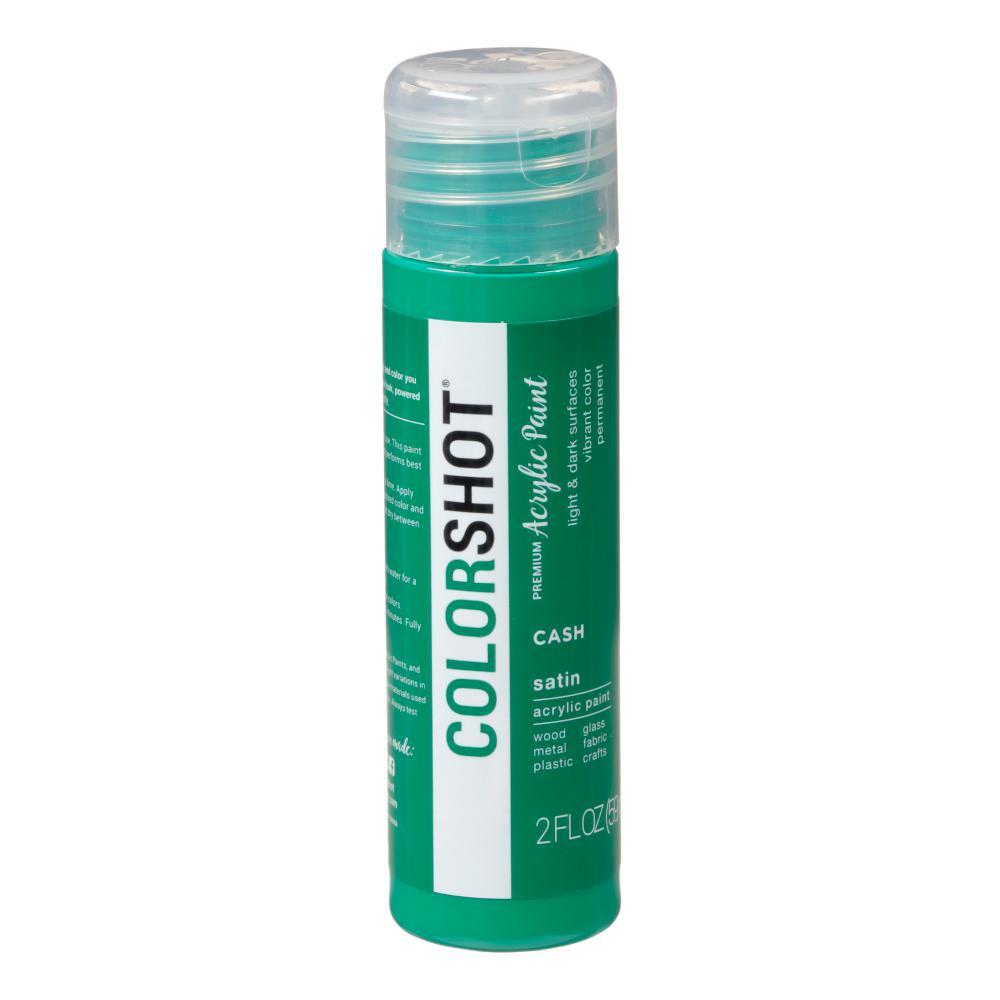 COLORSHOT 2 oz. Cash Green Craft Paint