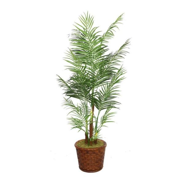 Laura Ashley 81 in. Tall Areca Palm Tree in 17 in.