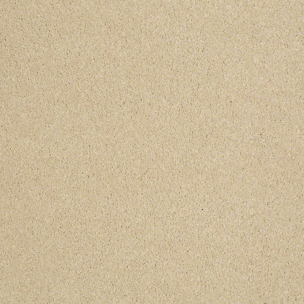 Carpet Sample - Cressbrook III - In Color Spotlight 8 in. x 8 in.