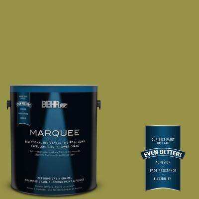 Home Decorators Collection #HDC-FL13-8 Tangy Dill Exterior Paint
