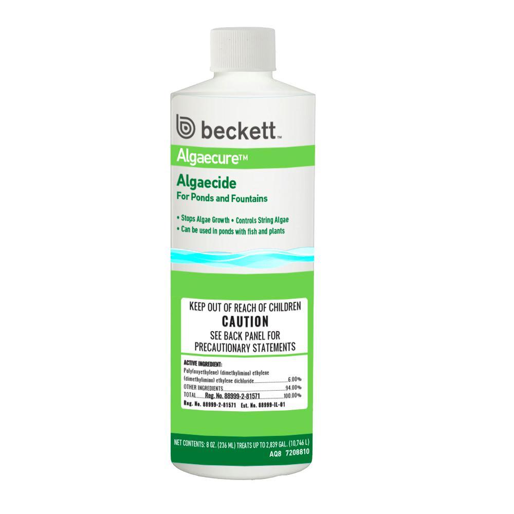 Algaecure Algaecide 8 oz.