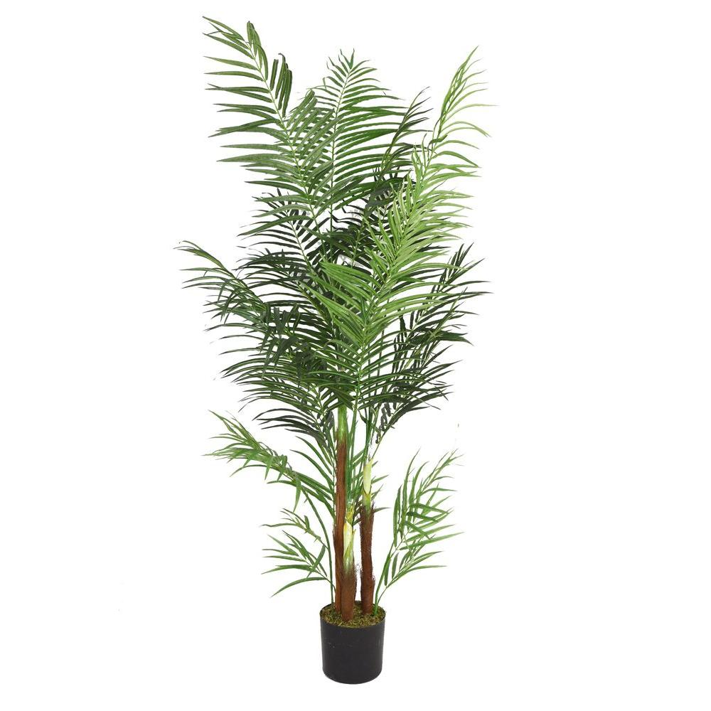 Laura Ashley 36 in. x 36 in. x 76 in. H Areca Palm Tree, ...