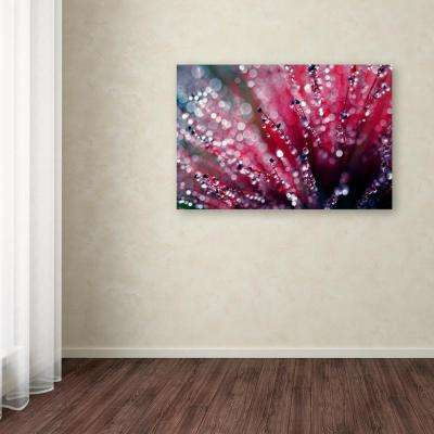 "30 in. x 47 in. ""Symphony in Pink"" by Beata Czyzowska Young Printed Canvas Wall Art"