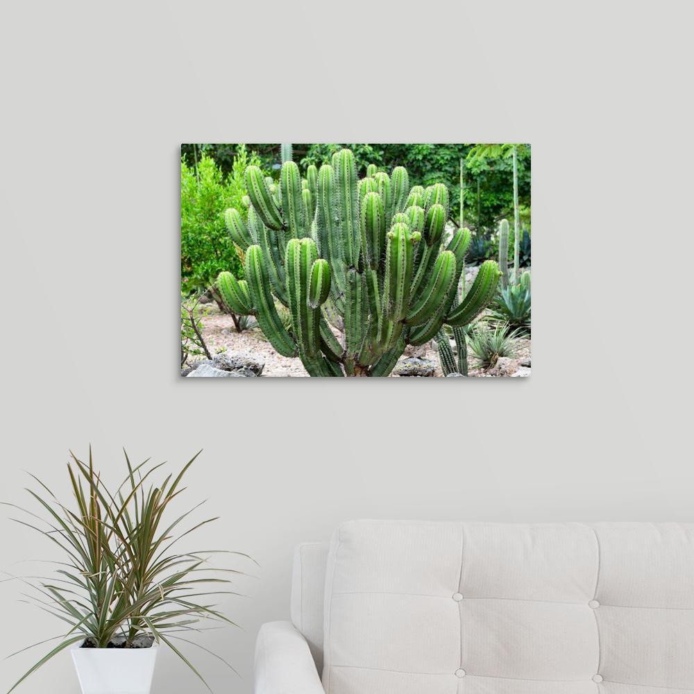 """Saguaro Cactus"" by Philippe Hugonnard Canvas Wall Art"