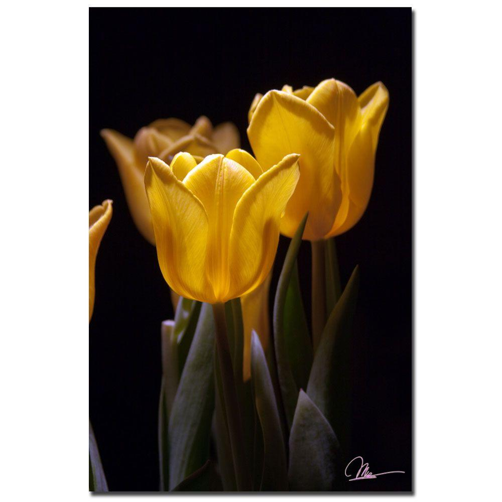 24 in. x 16 in. Yellow Blooms Canvas Art