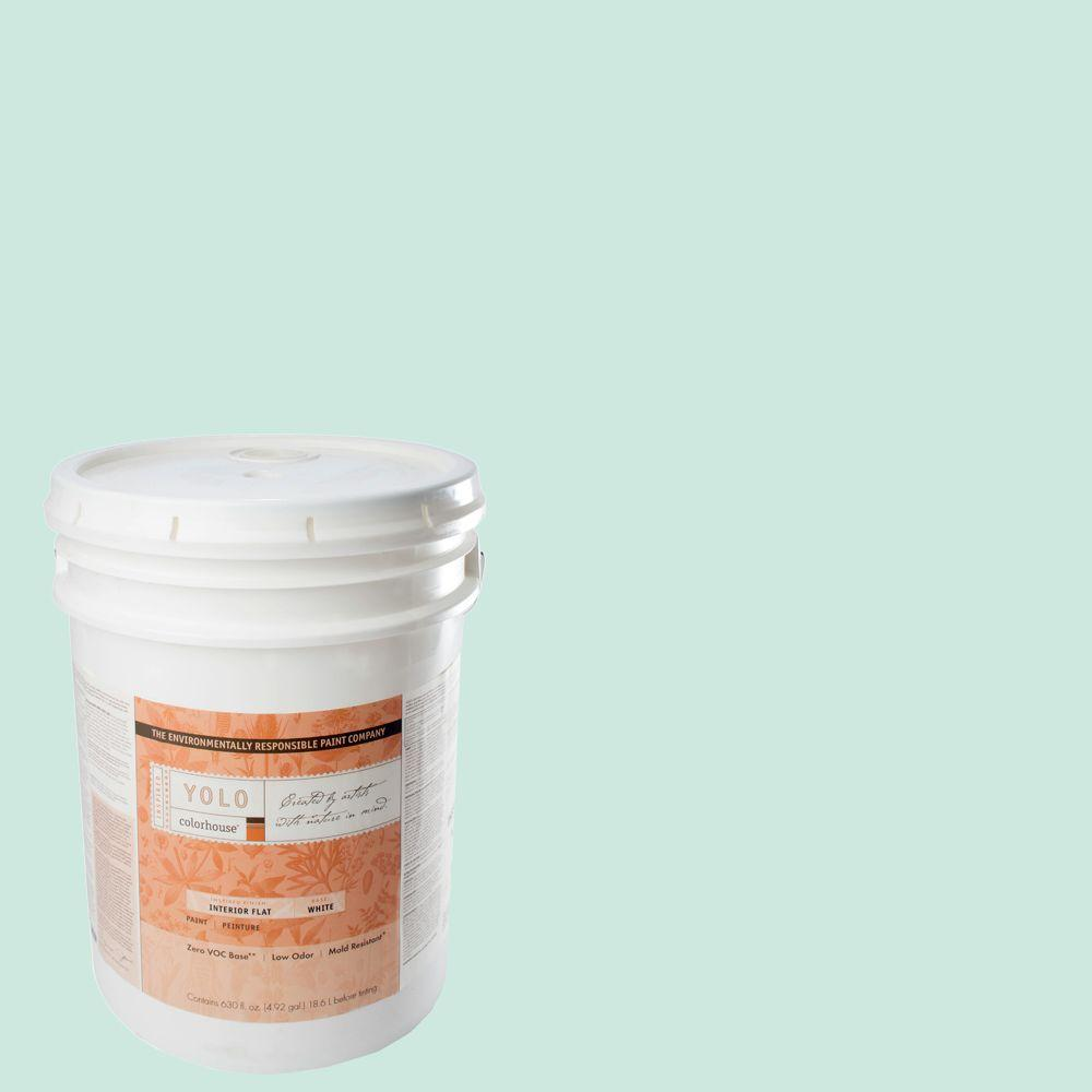 YOLO Colorhouse 5-gal. Water .01 Flat Interior Paint-DISCONTINUED