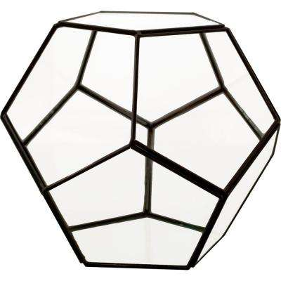 Mika 6 in. x 6 in. Glass Faceted Pentagon Terrarium