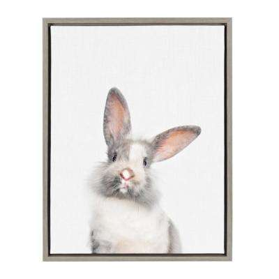 "Sylvie ""Animal Studio Cute Male Rabbit"" by Amy Peterson Framed Canvas Wall Art"