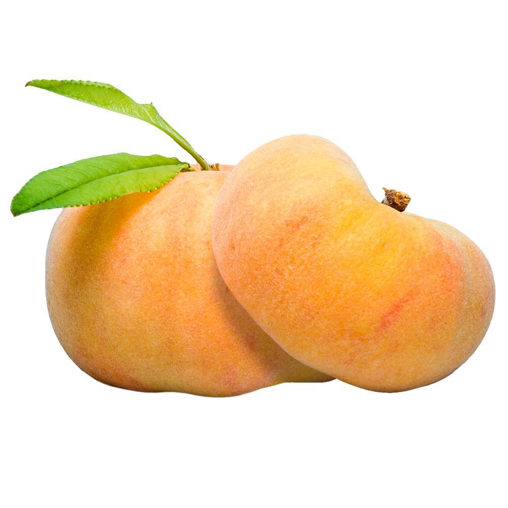 Flat Wonderful Peach Prunus Live Fruiting Bareroot Tree (1-Pack)