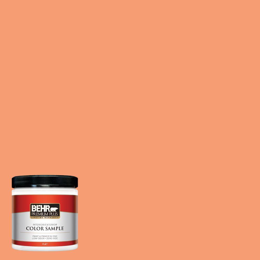 BEHR Premium Plus 8 oz. #P200-5 Burning Coals Interior/Exterior Paint Sample