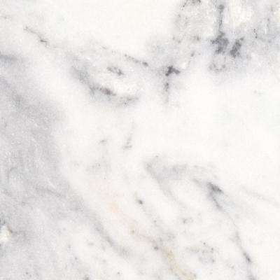 3 in. x 3 in. Marble Countertop Sample in Arabescus Carrara Marble
