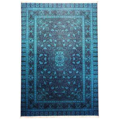 Serica Collection Multi Color 5 ft. 3 in. x 7 ft. 7 in. Anti-Bacterial Area Rug