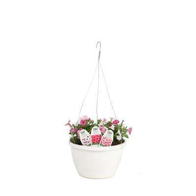 DIY Hanging Basket Kit Above and Beyond Flower Pillow Combination with 10 in. Container
