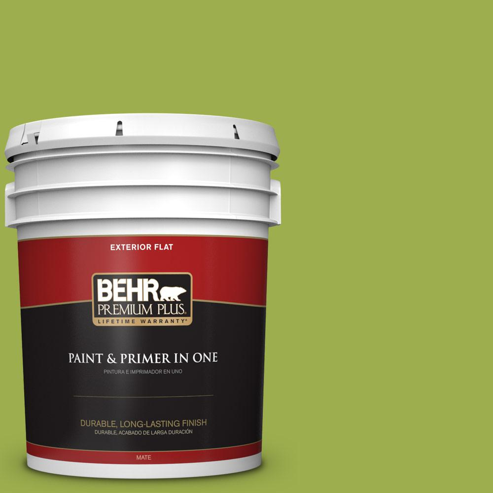 5 gal. #PPU10-05 Intoxication Flat Exterior Paint