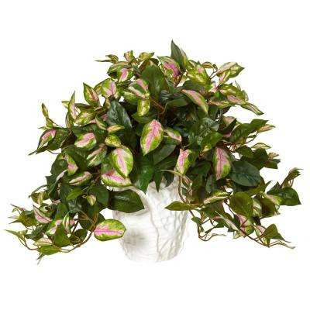 Indoor Hoya Artificial Plant in White Ceramic Vase