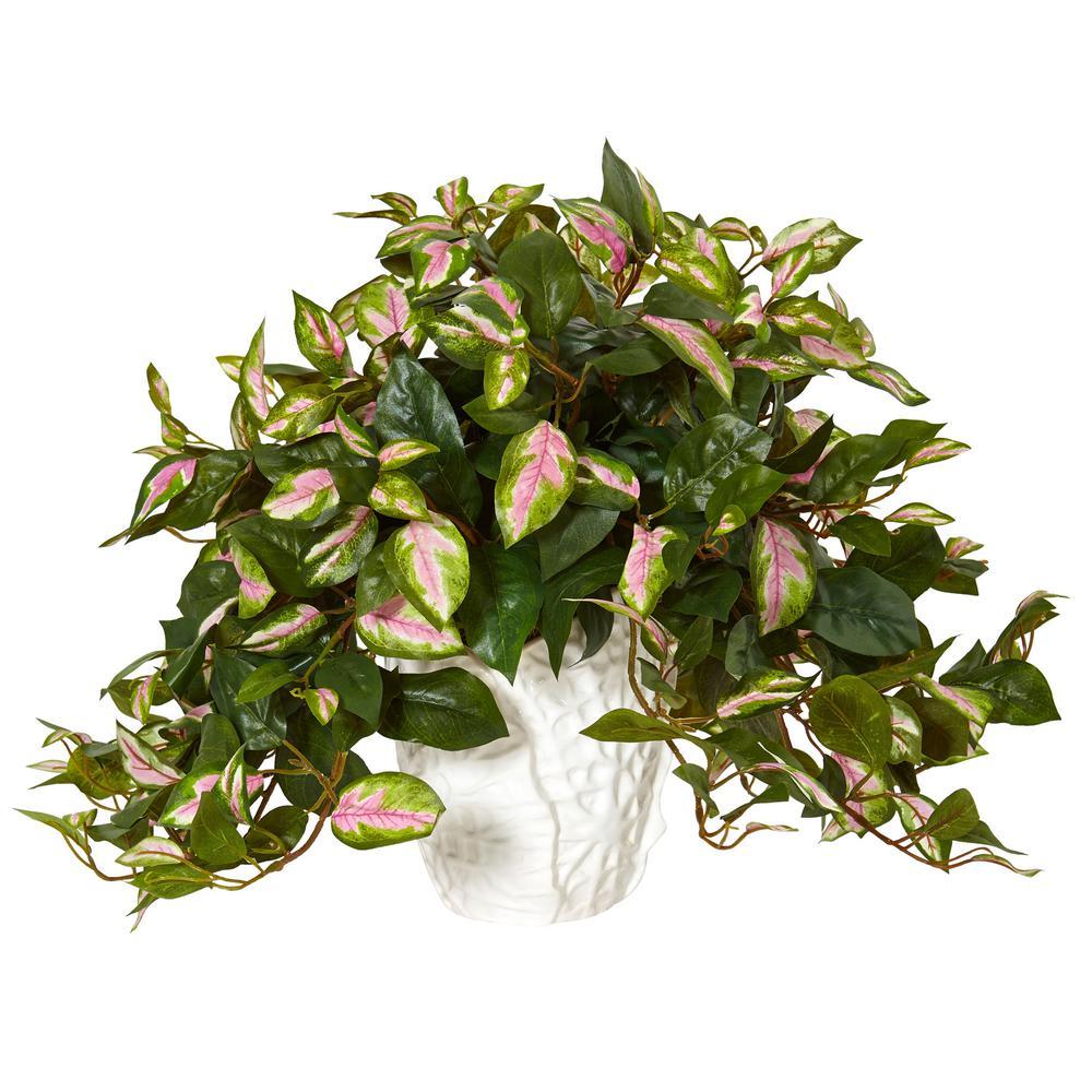 Nearly Natural Indoor Hoya Art...