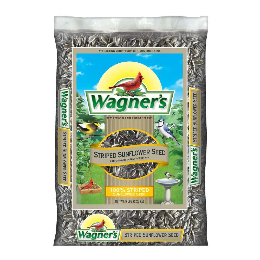 5 lb. 100% Striped Sunflower Seed Wild Bird Food