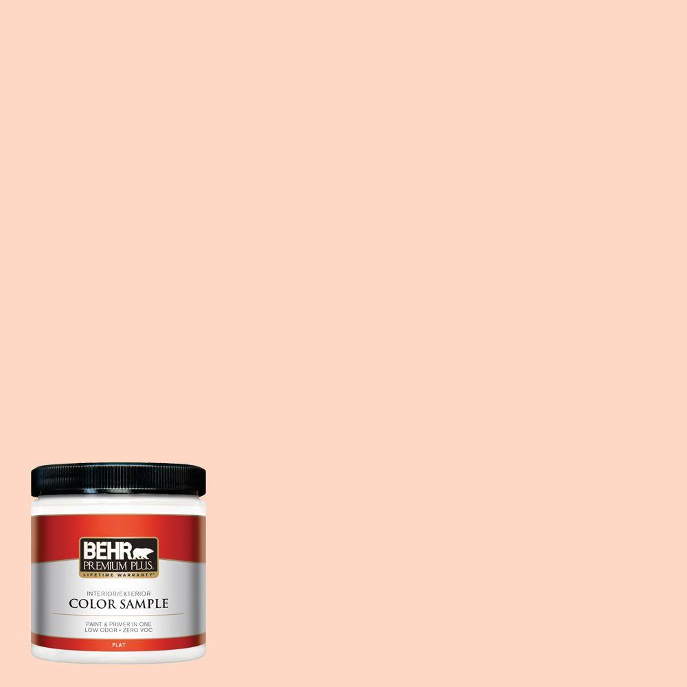 8 oz. #230C-2 Shell Coral Interior/Exterior Paint Sample
