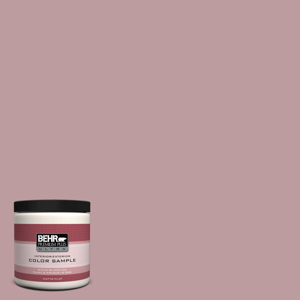 BEHR Premium Plus Ultra 8 oz. #BIC-06 Desert Lights Interior/Exterior Paint Sample