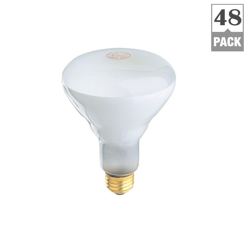 65watt soft white dimmable br30 flood light bulb maintenance pack