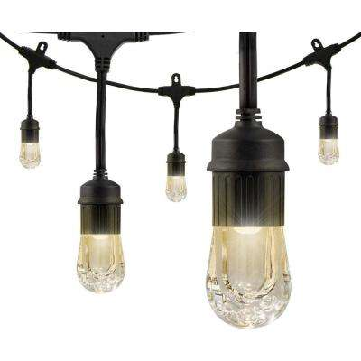 12-Bulb 24 ft. Integrated LED Cafe Sting Lights, Black