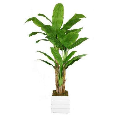 78 in. Tall Banana Tree with Real Touch Leaves in 14 in. Fiberstone Planter
