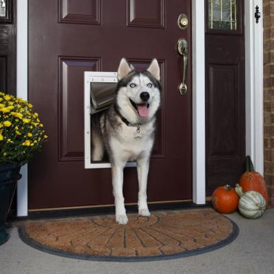10-1/8 in. x 16-1/4 in. Large Extreme Weather Pet Door