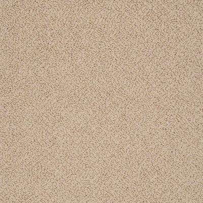Carpet Sample - Braidley - In Color Amber Glow 8 in. x 8 in.