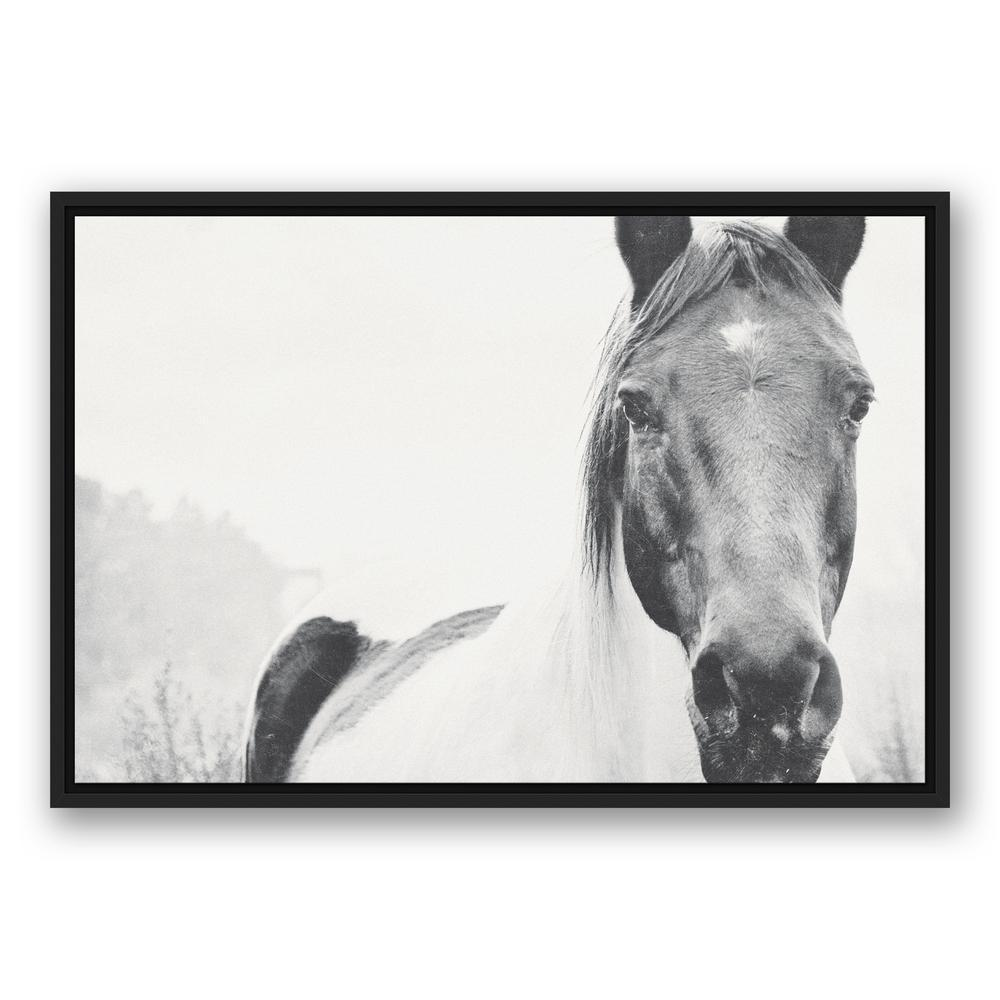 DESIGNS DIRECT 20 in. x 30 in. \'\'Black and White Lone Horse ...