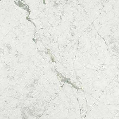3 in. x 3 in. Marble Countertop Sample in Carrara White Honed Marble