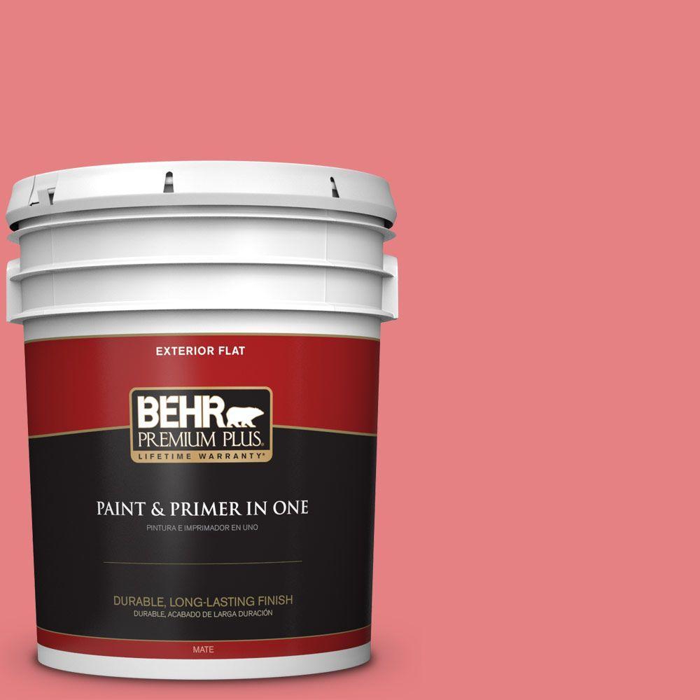 BEHR Premium Plus 5-gal. #P170-4 Sugar Poppy Flat Exterior Paint