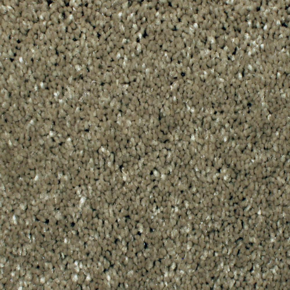 Home Decorators Collection Carpet Sample Gracious Manner