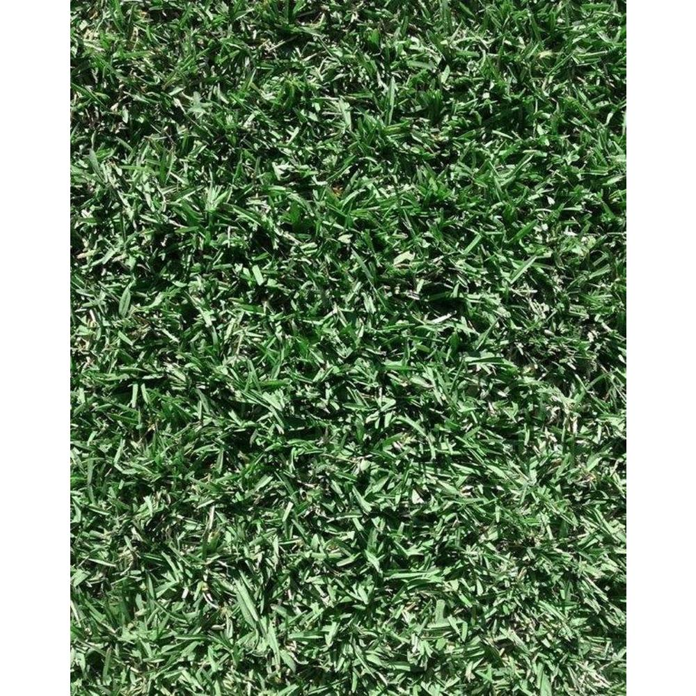 Harmony Home Sod 1600 Total sq. ft. Ship to FL (Quantity of 1= 4 Pallets Delivered to Customer)